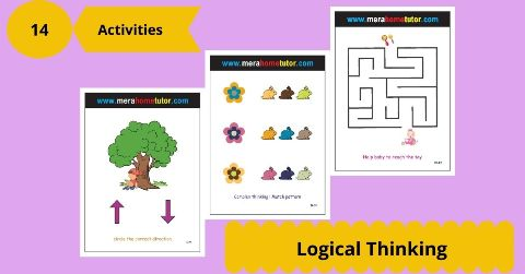 Logical Thinking Activity Flash Cards
