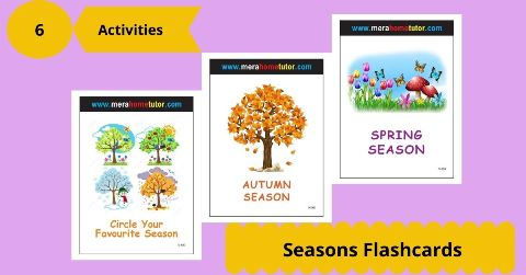 Seasons Flashcards Activity Flash Cards